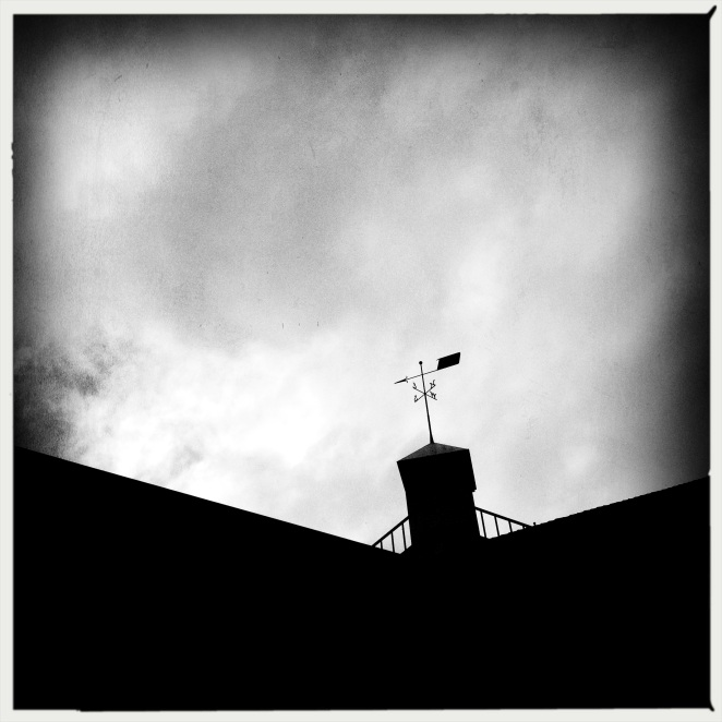 The weather forecast / an ill wind blowing, cloudy / a chance of bullets. // micropoetry - haiku - haikumages