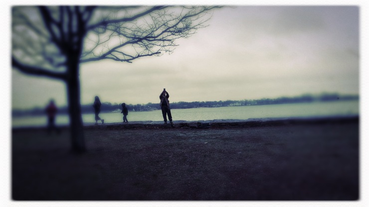 Warm Christmas Day walk / beautiful cacaphony / all cultures, all faiths. // haiku - micropoetry - haikumages